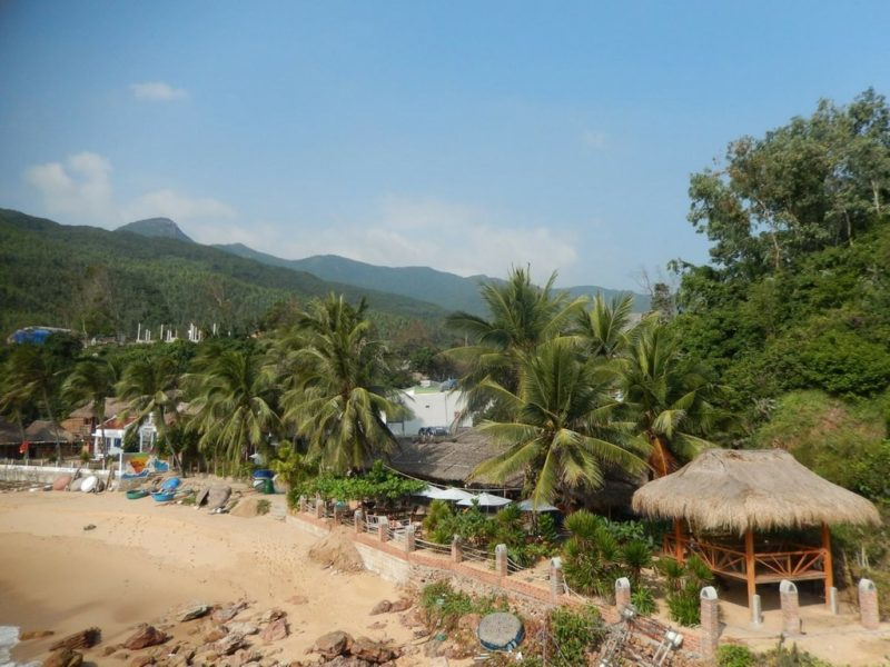 Big Tree Backpackers and Bistro - Quy Nhon