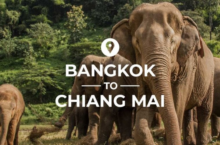 Bangkok to Chiang Mai cover image