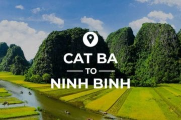Cat Ba to Ninh Binh cover image