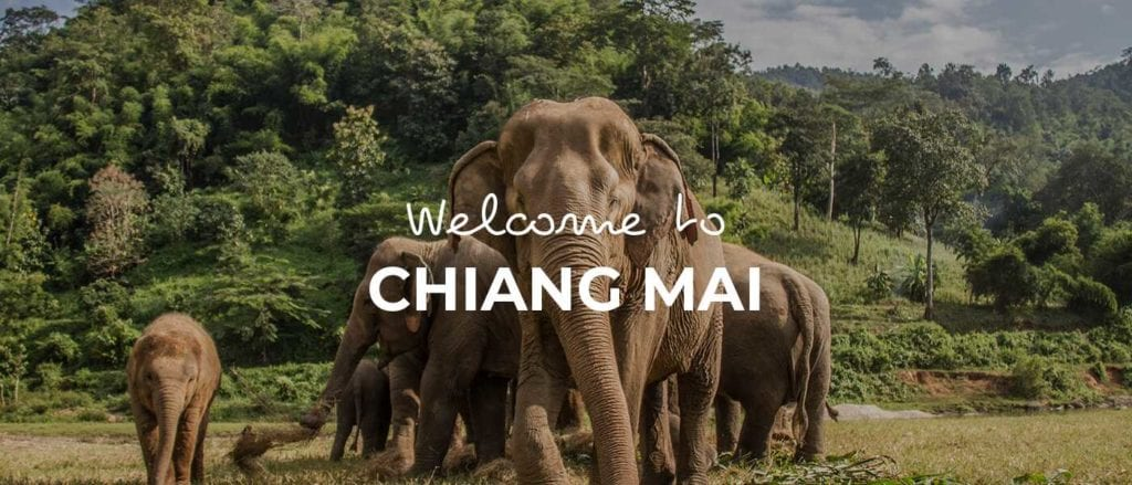 Chiang Mai cover image