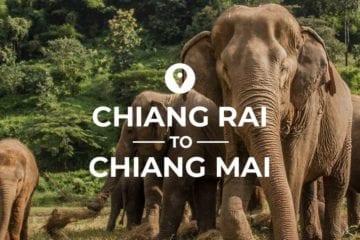Chiang Rai to Chiang Mai cover image