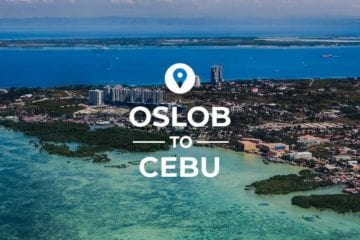 Oslob to Cebu cover image