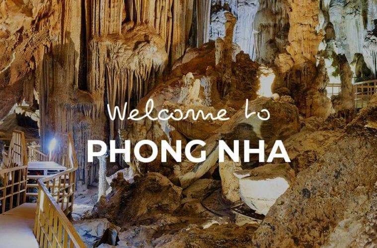 Phong Nha cover image