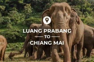 Luang Prabang to Chiang Mai cover image