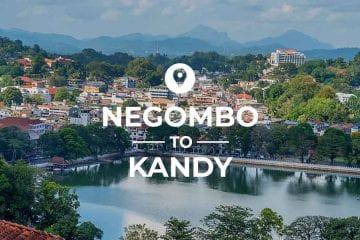 Negombo to Kandy train or bus