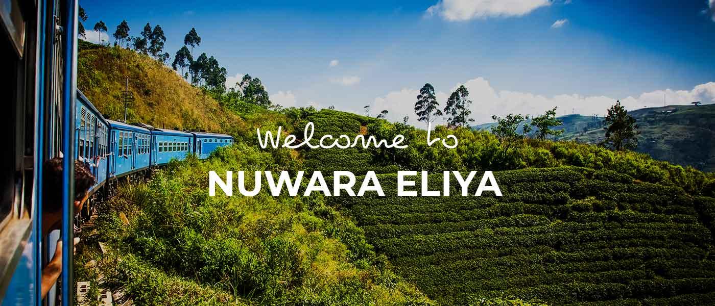 Nuwara Eliya things to do