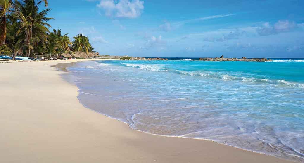 Cozumel Island in Playa del Carmen Mexico
