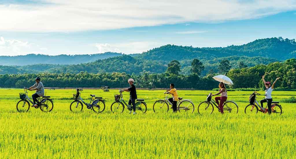 Bicycle tour in Sukhothai