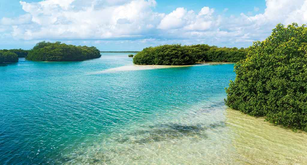 Lagoon reserve in Tulum Mexico